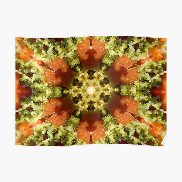Kaleidoscopic Nature 00084 Poster