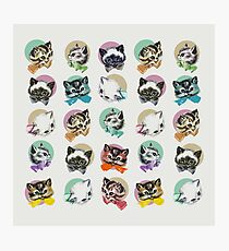 Cats & Bowties Photographic Print