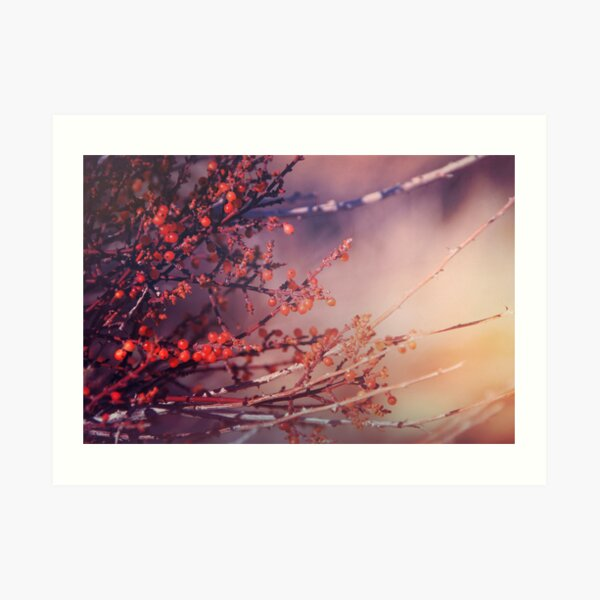 Fruitful Branching Art Print
