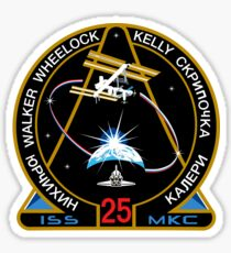 ISS Mission 25 Sticker