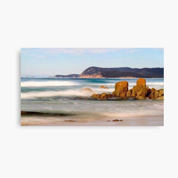 Friendly Beach Canvas Print