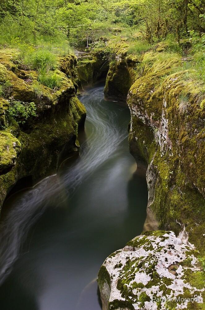Dark water and springtime greenery by Patrick Morand
