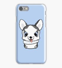 Cute little siberian husky puppy iPhone Case/Skin