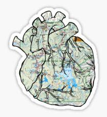 Heart to Travel Sticker