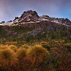 Pre Dawn on the Cradle Massif - Cradle N.P. Tasmania by Mark Shean