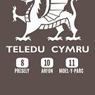 Teledu Cymru by northstardesign