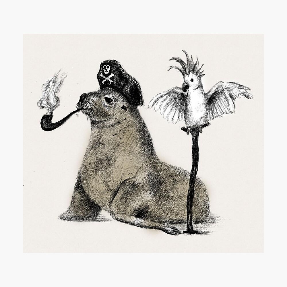Pirate Fotodruck