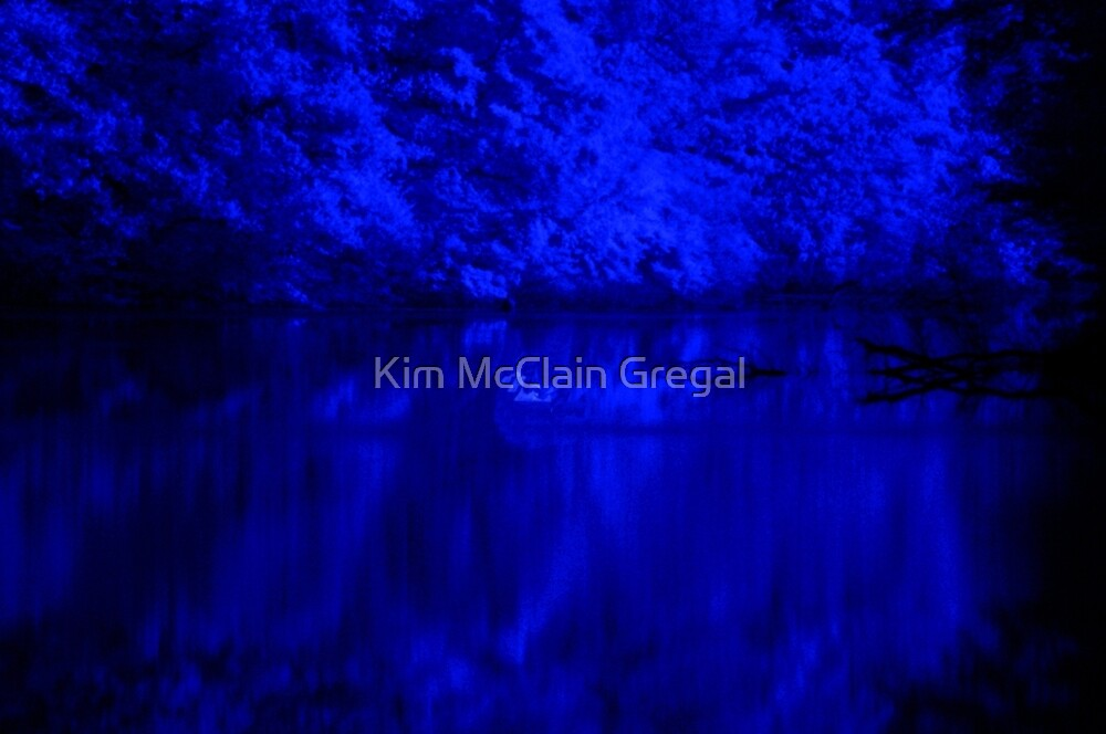 Maskell Mills Pond Infrared by Kim McClain Gregal