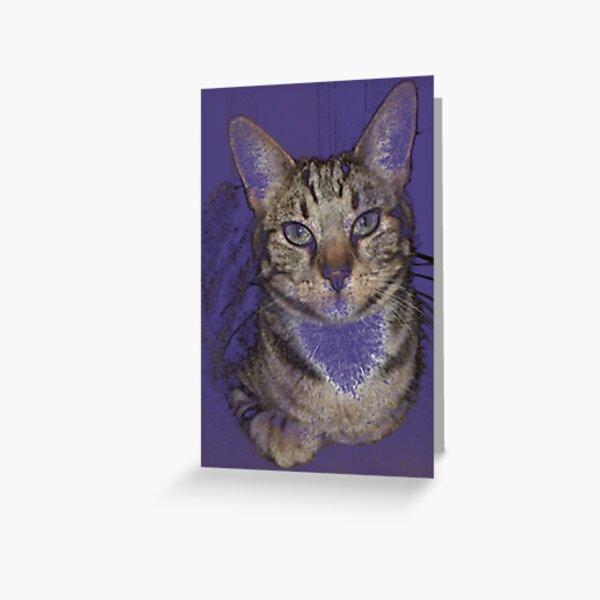 TIGER TIGER TIGER Greeting Card