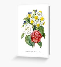 P.J. Redoute vintage colorful flowers botanical illustration.  pink and white camellia, yellow and white daffodils, blue and yellow pansies. Greeting Card