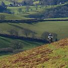 Mountain biker and hills by turniptowers
