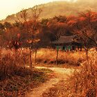 Fall colors of Korean temple by aaronchoi