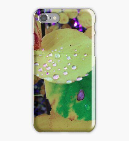 After Rain iPhone Case/Skin