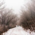 Walking through snow storm by aaronchoi