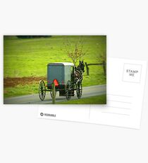 Amish Buggy on Highway Postcards