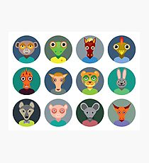 Chinese zodiac collection Photographic Print