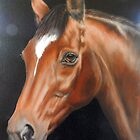 Classique, Anglo-Arab Mare by Jean Farquhar