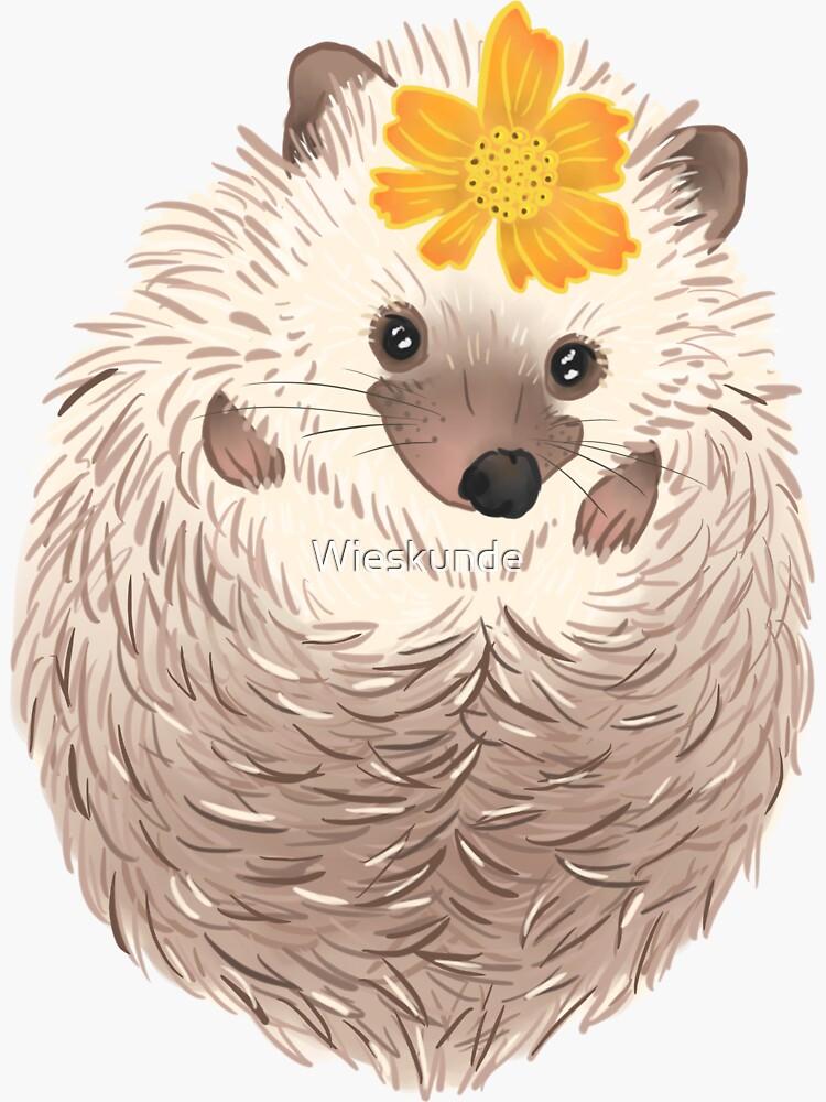 Hedgehog by Wieskunde