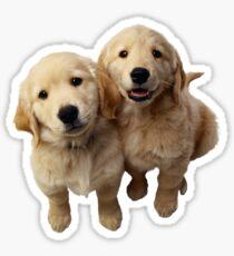 Puppies! Sale!!! Sticker