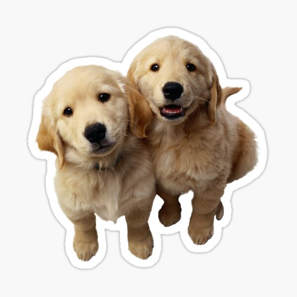 Puppies! Sale!!! Sticker