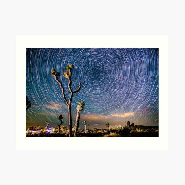 Polaris Star Trails Spin Around Yucca in Joshua Tree Art Print