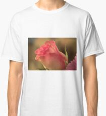 Soft Pink and White Rose, As Is Classic T-Shirt