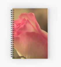 Soft Pink and White Rose, As Is Spiral Notebook