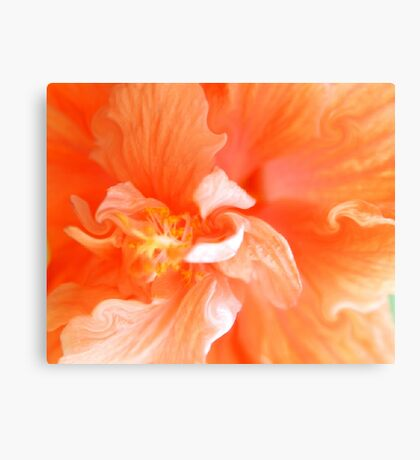 Orange Hibiscus Art Canvas Print