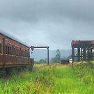 Glenreagh Railway Station by Michael Matthews