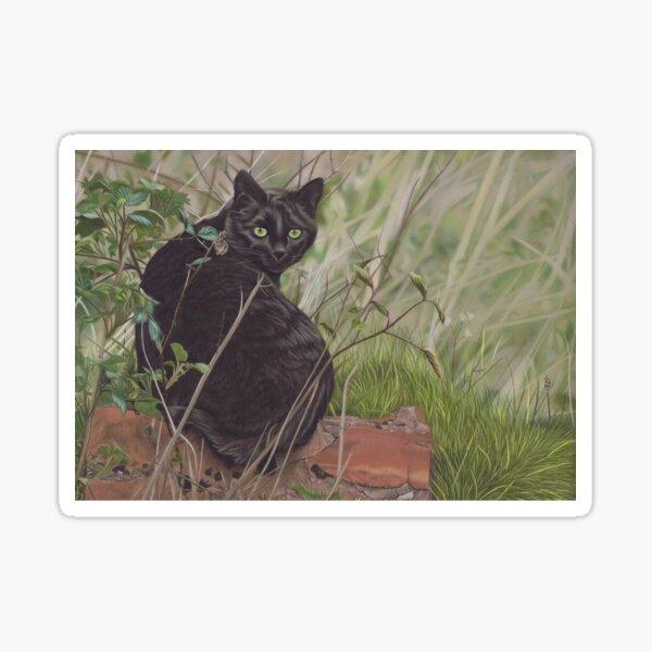 Black cat hunting in woodland Sticker