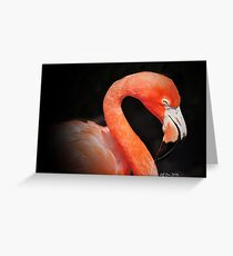 Pink Flamingo (Black Background) Greeting Card