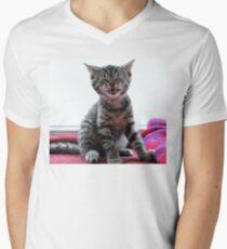 You Haz Dog! Men's V-Neck T-Shirt
