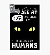Cats can see at 1/6th the light level as needed by Humans Photographic Print