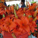Vibrant flower selcetion at Farmer's Market by AuntieBarbie