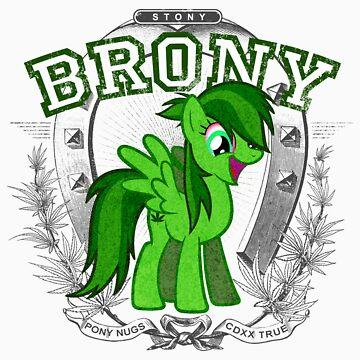 Stony Pony by KFledderman