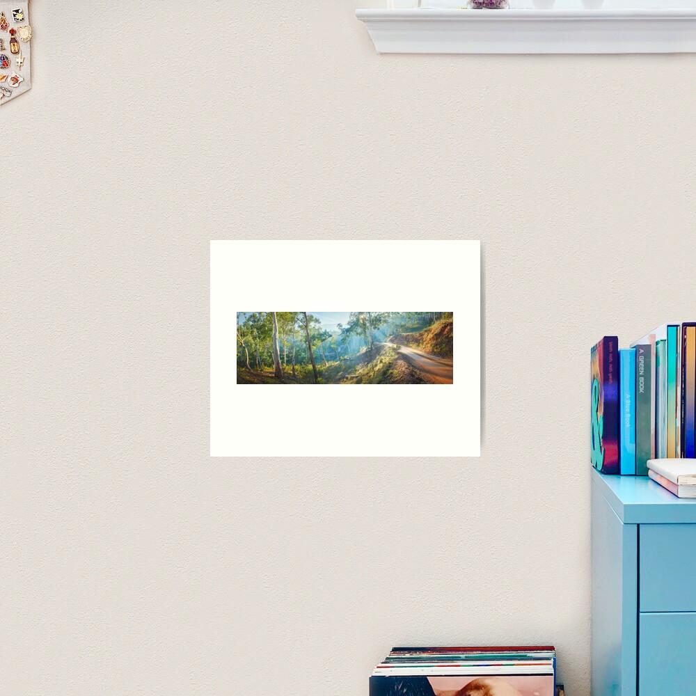 Morning Light, Howqua Hills, Mansfield, Victoria, Australia Art Print