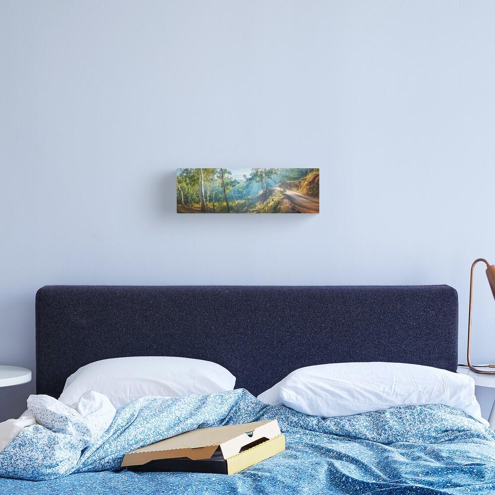 Morning Light, Howqua Hills, Mansfield, Victoria, Australia Canvas Print