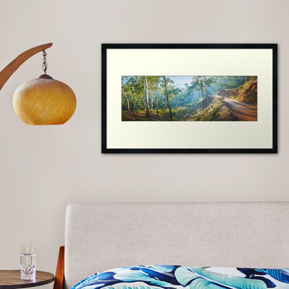 Morning Light, Howqua Hills, Mansfield, Victoria, Australia Framed Art Print