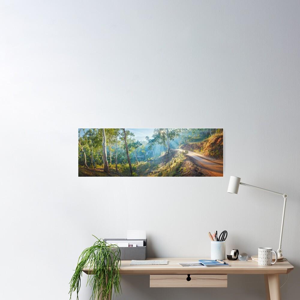 Morning Light, Howqua Hills, Mansfield, Victoria, Australia Poster