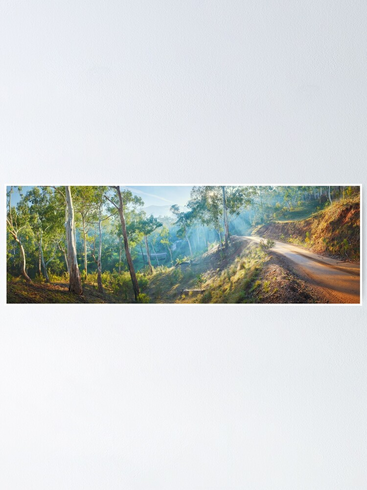 Alternate view of Morning Light, Howqua Hills, Mansfield, Victoria, Australia Poster