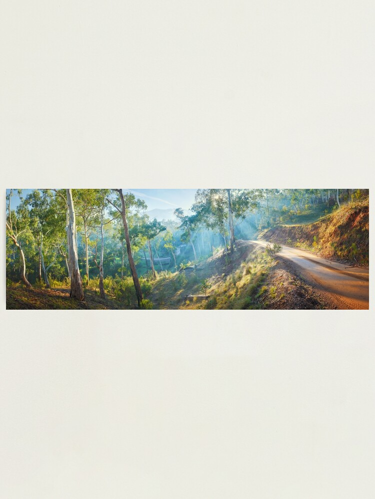 Alternate view of Morning Light, Howqua Hills, Mansfield, Victoria, Australia Photographic Print