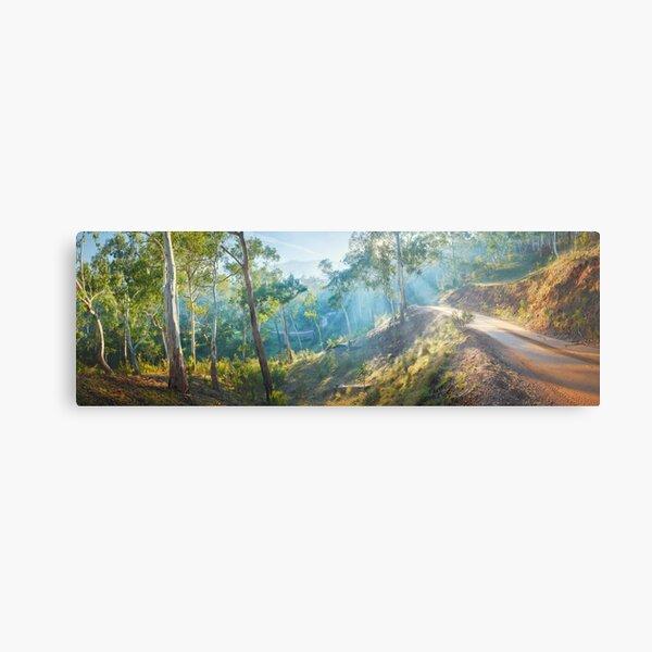 Morning Light, Howqua Hills, Mansfield, Victoria, Australia Metal Print
