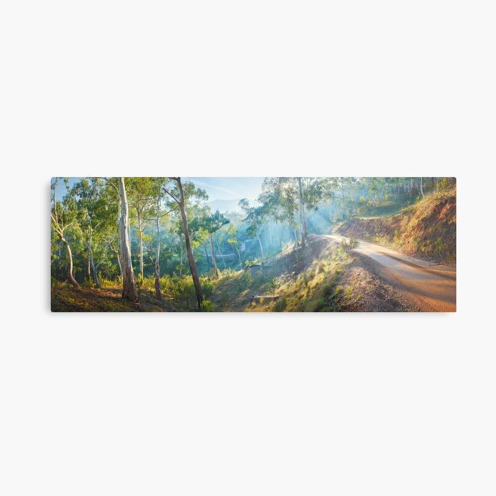 Morning Light, Howqua Hills, Mansfield, Victoria, Australia Metal Print