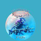 Siamese Fighting Fish 2 by Tom Godfrey