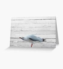 angry seagull Greeting Card