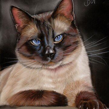 Siamese Cat by art-of-dreams