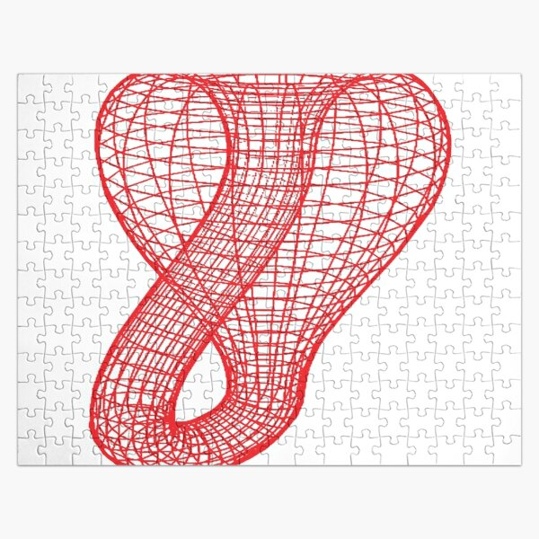 A two-dimensional representation of the Klein bottle immersed in three-dimensional space, #TwoDimensional, #representation, #KleinBottle, #immersed, #ThreeDimensional, #space Jigsaw Puzzle