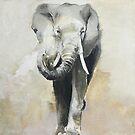 Elephant by Skye O'Shea
