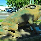The Big Cane Toad by peasticks