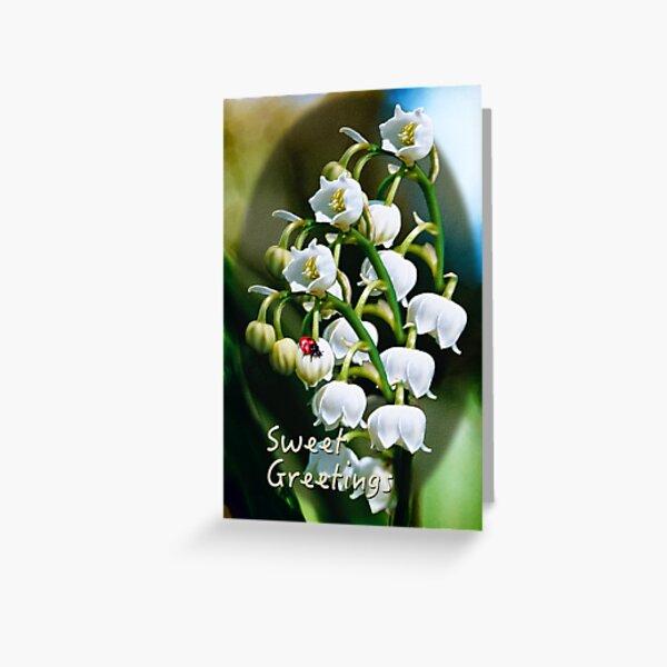 D1G1TAL-M00DZ ~ FOLKART ~ Lily of the Valley by tasmanianartist Greeting Card